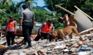Lombok in puin, Nick Rensink e.a. in actie